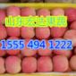 15554941222超碰97资源站97资源中文字幕苹果产地