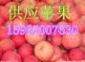 超碰97资源站97资源中文字幕苹果批发价格
